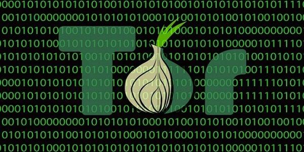 El ámbito de seguridad informática es crucial en la actualidad.