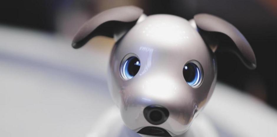 Conoce a Aibo, el perro robot de Sony